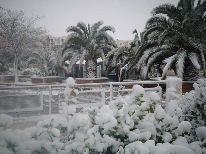 23 gen 15 ameteo algeria2 - Spagna e Nord Africa: le zone fredde del Marzo 2014.