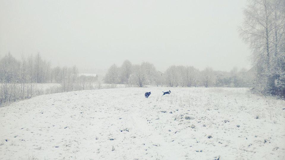 15 apr 15 bielorussia1