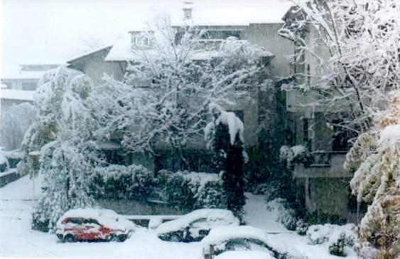 Immagini della neve in Emilia del 4 Novembre 1980.