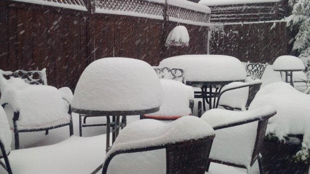 06 ott 16 cypress hills snow - Washington DC: Il mese di maggio più freddo e piovoso di sempre!