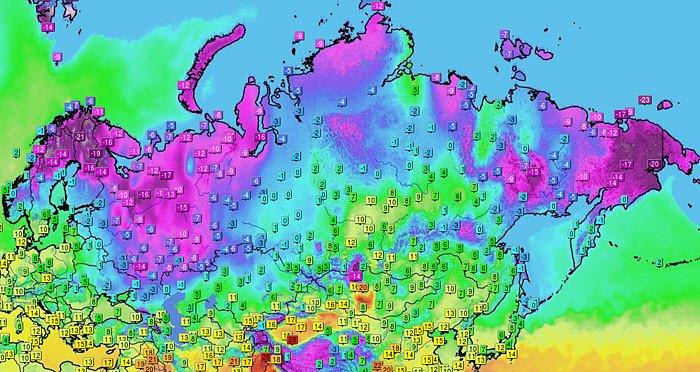 siberia in europa 1 - Sudafrica, meteo rigido, anche le giraffe immerse nella neve