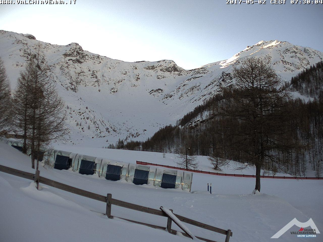 Larici wide - La nevicata del 1° Maggio in Lombardia
