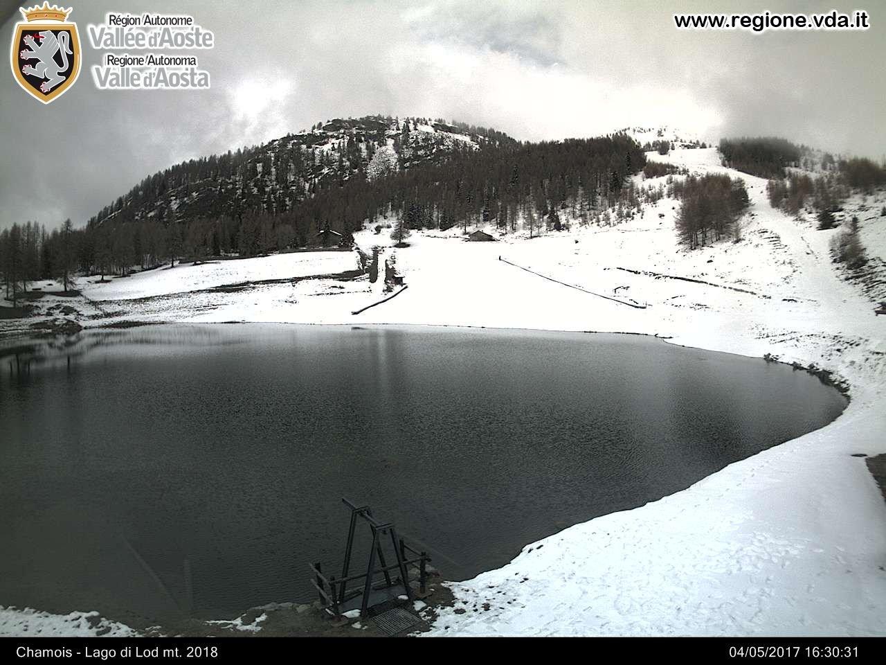 big chamois - Continuano le bufere di neve sull'Europa Settentrionale!