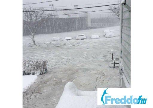 gelo infernale12 - Dalla pioggia torrenziale alla TEMPESTA di GHIACCIO in una NOTTE